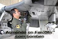 Armando-os-Falcões-com-bombas
