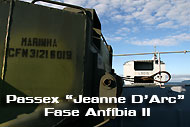 Passex-Jeanne-D'Arc-Fase--Anfíbia-II