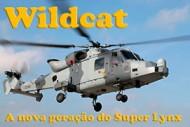 Wildcat artigos