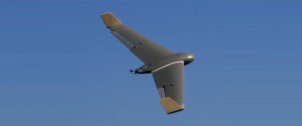 Santos-Carcara-2-UAV