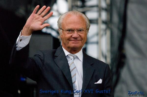 Rei Carl Gustaf