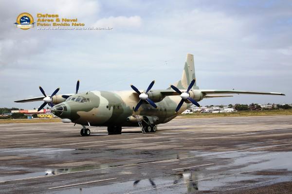 Y-8-FAV-4