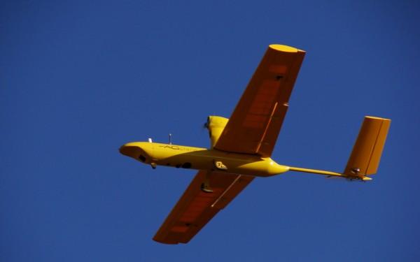 Drone-Arara