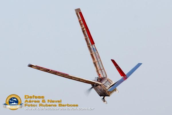 Colapso na estrutura das asas