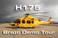 H175-banner