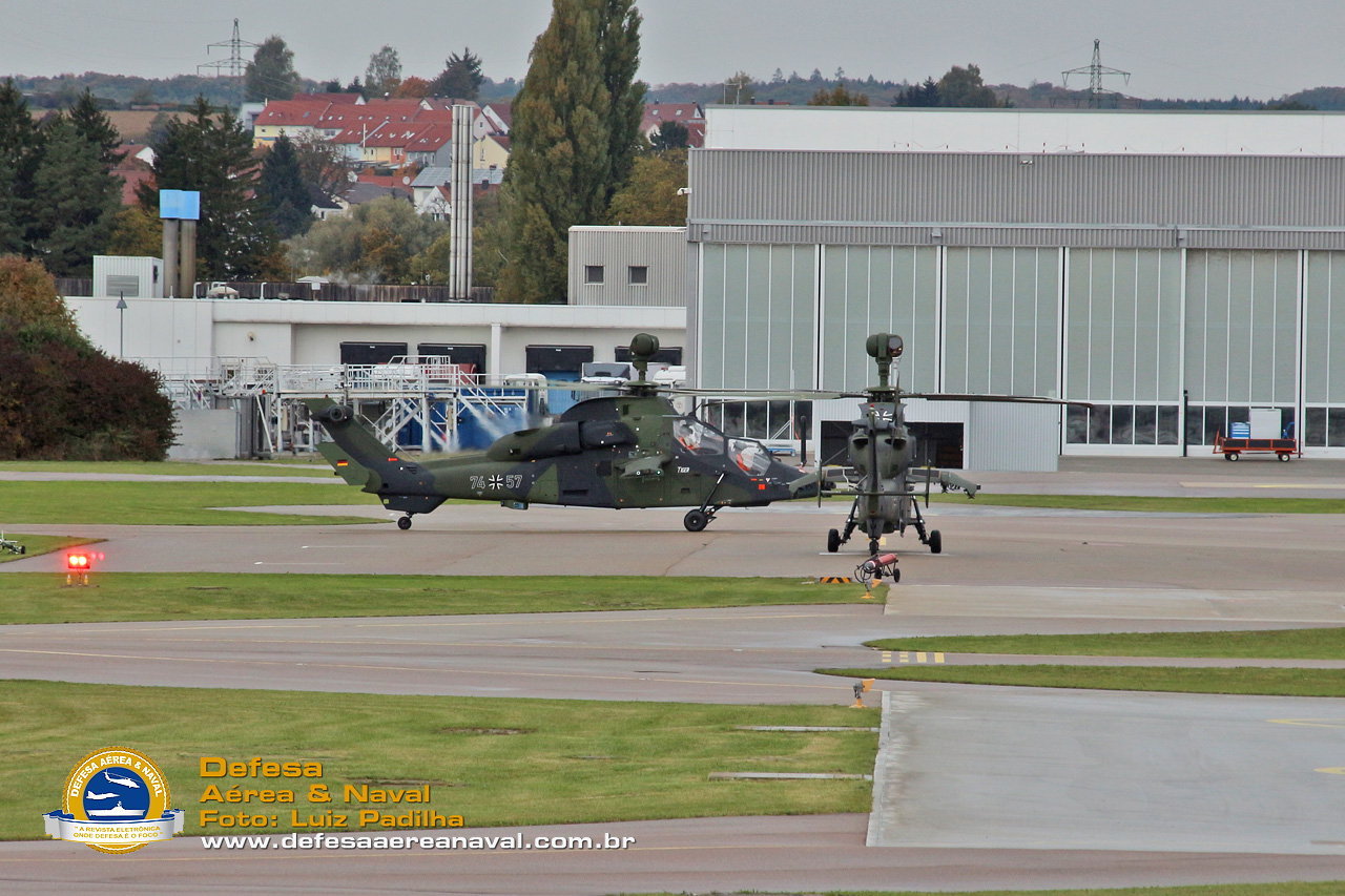 tiger-donauworth-5