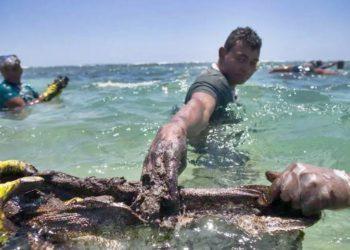Ao menos 5 mil toneladas de óleo foram coletadas em 942 localidades litorâneas Foto: TIAGO QUEIROZ